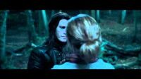 Harry Potter and the Deathly Hallows part 1 - Hermione and the Snatchers in the forrest (HD)