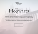 Hogwarts Experience on Pottermore