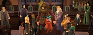 Hagrid's birthday