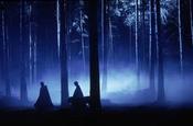 Verbotener Wald (ebener Grund)
