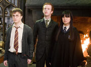 Harry, Percy, Cho