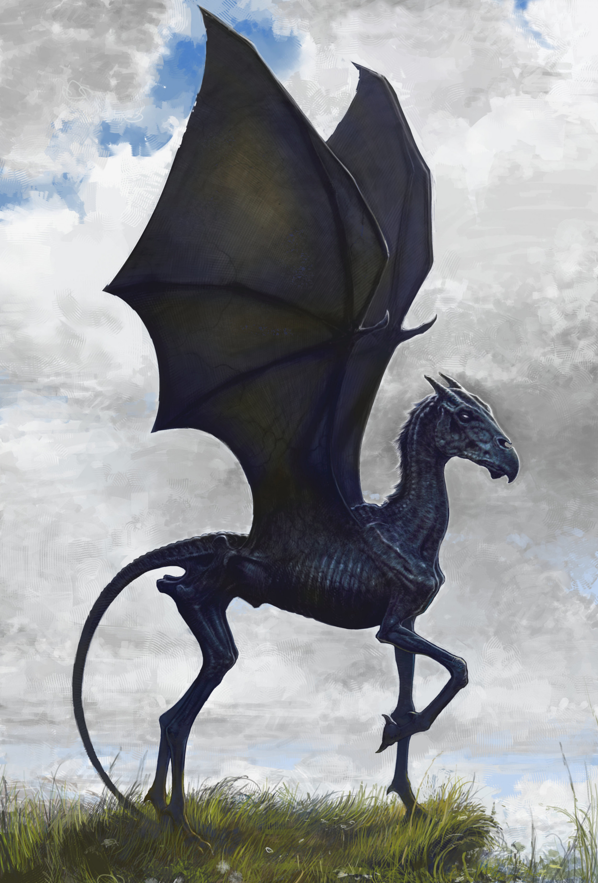 Thestral | Harry Potter Wiki | FANDOM powered by Wikia