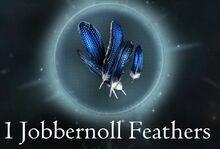 Jobbernoll Feathers FBCFWW