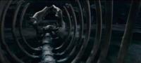 Squelette basilic