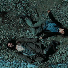Гарри и Сириус без сознания