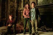 Harry, Ronny og Hermine i Hylehuset
