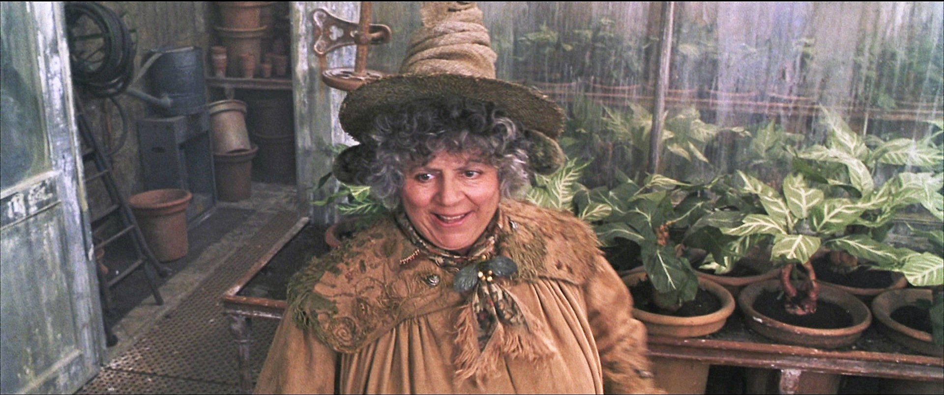 Pomona Sprout Harry Potter Wiki Fandom