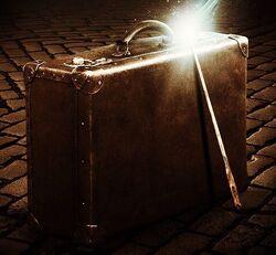 Newton Scamander's suitcase