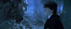 Potter e Firenze