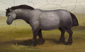 Horse.png