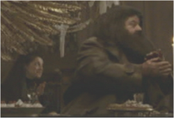 Professor and Hagrid