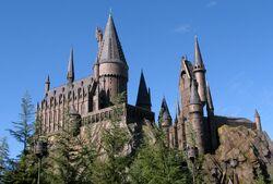 Wizarding World of Harry Potter Castle