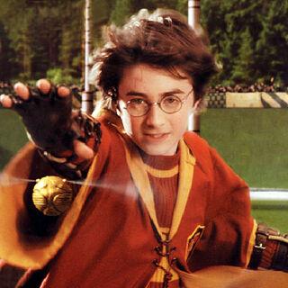 Гарри Поттер, ловец