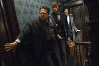 Jacob, Newt et Porpentina
