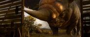Buchorożec w filmie Fantastyczne zwierzęta i jak je znależć