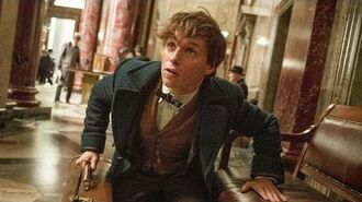 'Fantastic Beasts And Where To Find Them' - Movie Review