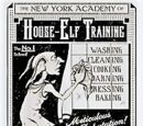 The New York Academy of House-Elf Training
