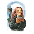 Books chapterart hbp 25