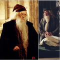 Dumbledore 1.png