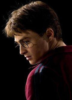 Harry Potter (EdP)