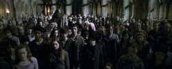 Crowd who saw Professor Dumbledore's dead body in the courtyard