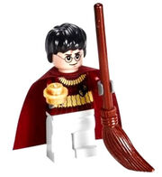 Harry Quidditch LEGO