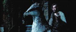 Harry Potter Prisoner Azkaban sirius buckbeak