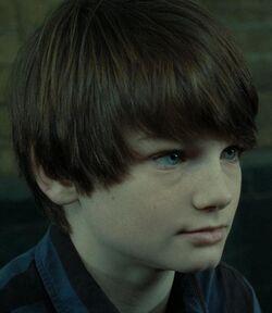 Albus Severus Potter Infobox