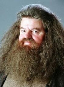 Dosya:Rubeus Hagrid.jpg