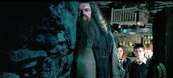 Hagrid talking to the trio