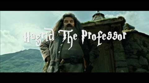 Hagrid the Professor
