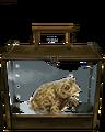 Natterjack Toad.png