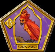 Phoenix Wizard Card