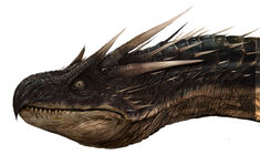 Dragon WB F4 HeadDetailHorntail Illust 100615 Land