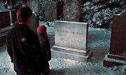 Harry i Hermiona przy grobie Jamesa i Lily