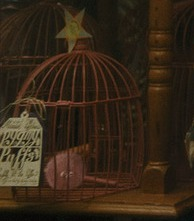 File:Pygmy puff inside the cage.JPG