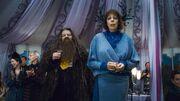 Хагрид и мадам Максим на свадьбе