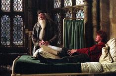 Dumbledore Bedside Manner POA