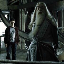 Dumbledore na wieży