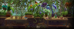Herbology second year