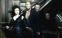 Bellatrix-and-Death-Eaters-bellatrix-lestrange-28967874-1920-800