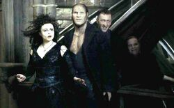 Bellatrix-and-Death-Eaters-bellatrix-lestrange-28967874-1920-800