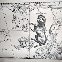 Созвездие Большого Пса (Сириус Блэк)
