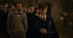 Dumbledore teaching Newt