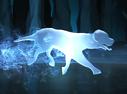 Mongrel Dog Patronus