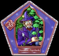 Бомонт Марджорибэнкс (HP2)