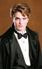 Cedric Diggory bal
