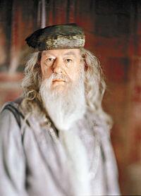 Dumbledore2009