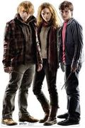 10. Ronald Bilius Weasley, Harry James Potter, Hermione Jean Granger
