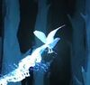 Sparrowhawk-patronus